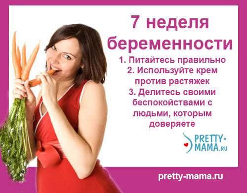 7 неделя беременности
