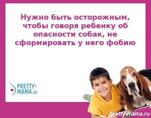 собака в семье и безопасность